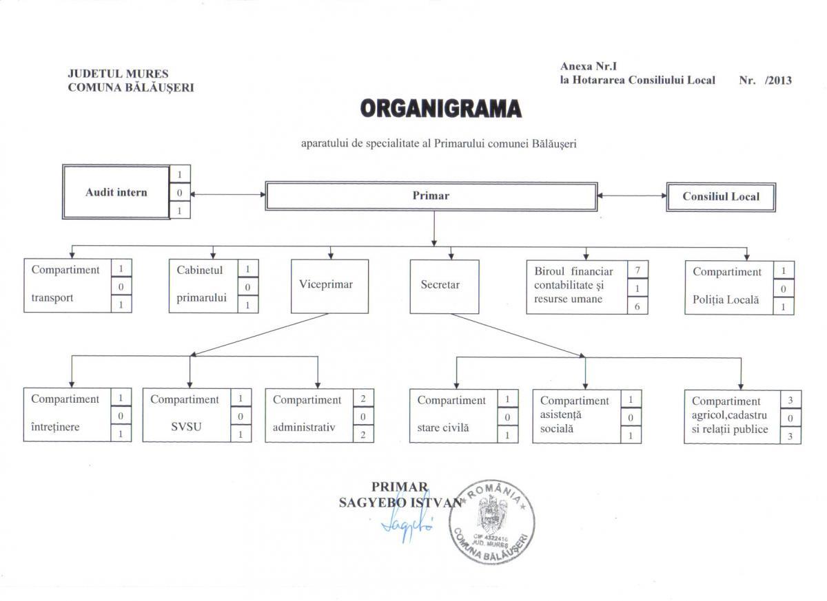 organigrama-balauseri